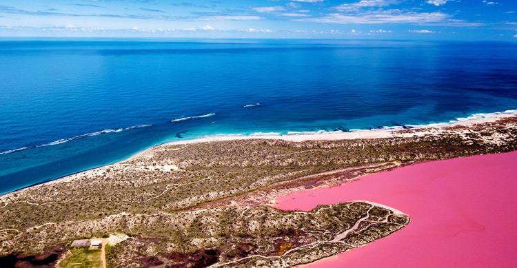 Pink Lake Ariel View
